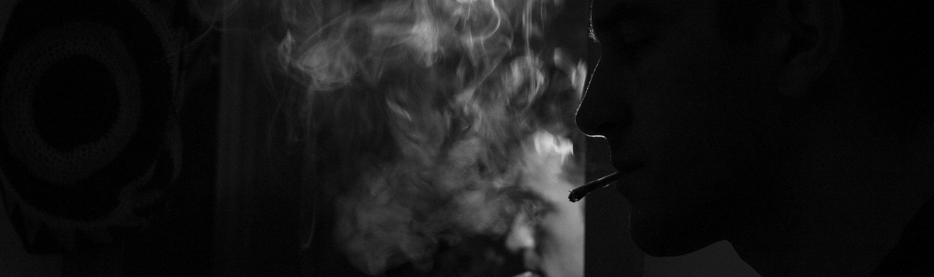 Cannabis, pourquoi la légalisation s'impose